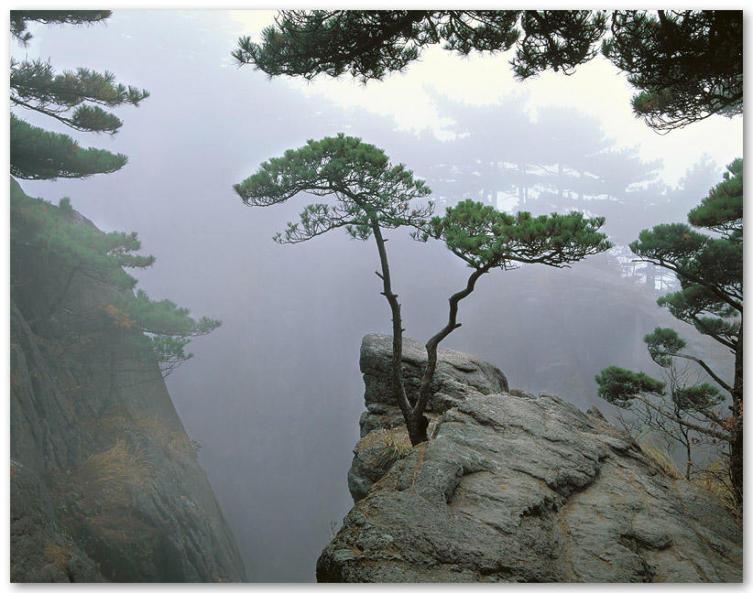 黃山旅游景點圖片,黃山旅游風景圖片; 水彩畫似的風景; 黃山圖片庫